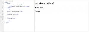 html bssics